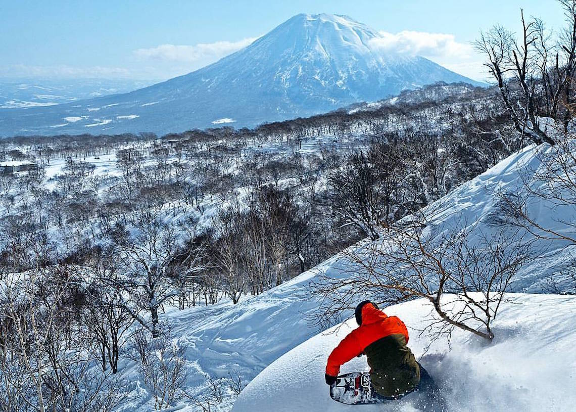 Niseko snowboard Hirafu backpackers hostel